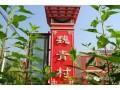 魏青村第二届美食节开始啦!4月27日-5月5日举行为期一周。